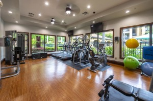 One Bedroom Apartments for Rent in Northwest Houston, TX - Fitness Center (2)